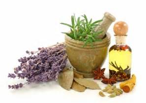 home holistic are herbal remedies the way to healing herbal