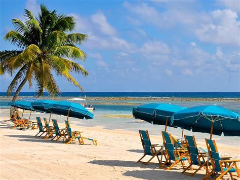 cruises  costa maya mexico holland america  cruises