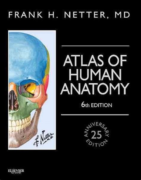 netter s anatomy coloring book plate 1 5 netter s atlas of human anatomy 6th ed