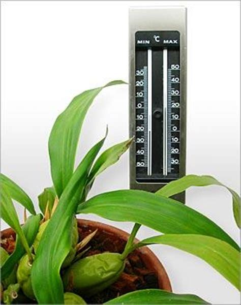 temperature and humidity waldor orchids