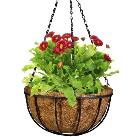decorative hanging planters 20cm wrought wall iron hanging flower basket decorative