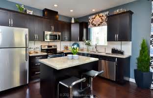 Kitchen Wall Colors With Black Cabinets Granite Countertops Cabinets Stainless Steel Appliances H O M E Y Light