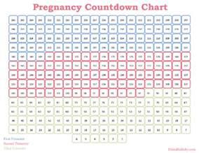 Countdown Chart Template printable pregnancy countdown chart