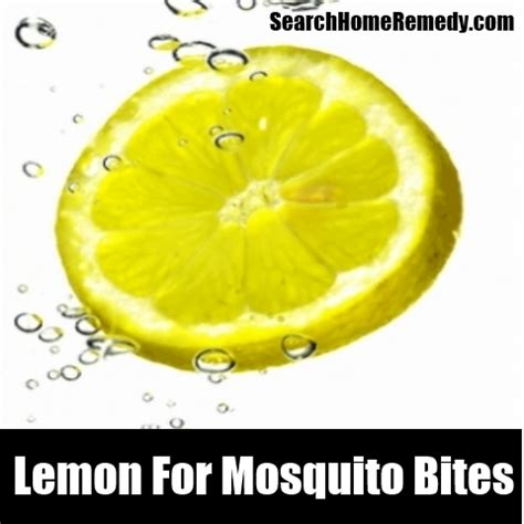 20 mosquito bites home remedies natural treatments cures