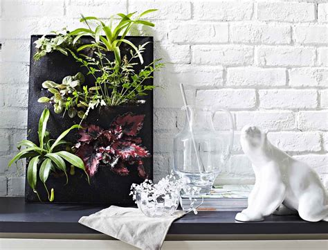 unique ideas  display indoor plants home decor