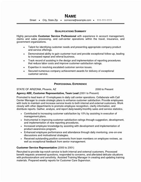 sle resume objective statements for customer service resume summary statement exles resume summary statement