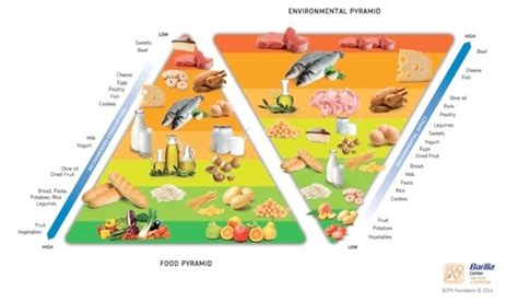piramide alimentare barilla bcfn quot pi 249 sostenibilit 224 nel sistema alimentare