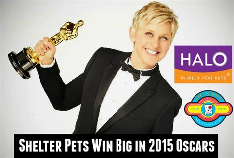 Oscar Swag Scoops Are On The Way by Shelter Pets Win Big In 2015 Oscars Swag From Halo