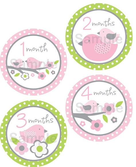 printable onesie stickers cute baby bird printable monthly milestone stickers bird