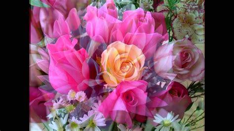 fiori con i musica antistress con i fiori pi 249 belli mondo