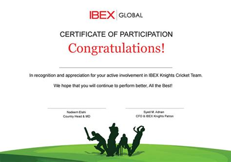 certificate cricket on behance