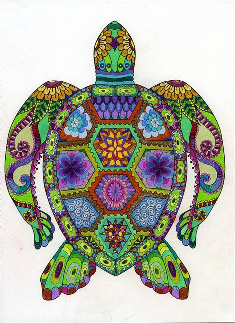 colored pages of coloring animals turtle animal and coloring