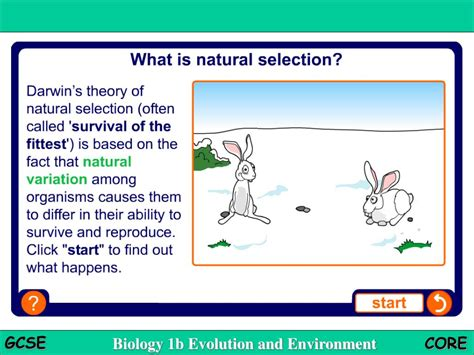 what is natural section ppt natural selection powerpoint presentation id 761564