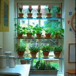 Spice Rack Glass Jars Plantas Para Decorar Nuestras Cocinas Decoraci 243 N De