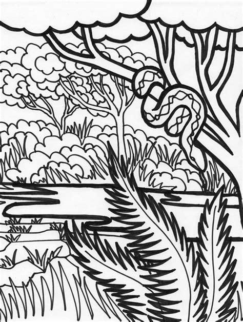 rainforest canopy coloring page coloring pages of rainforest animals bestofcoloring com