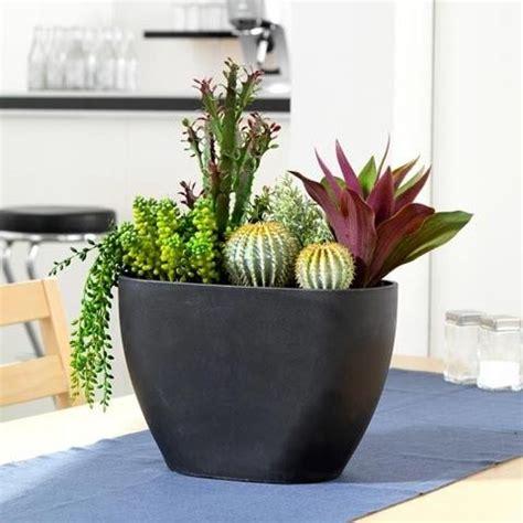 41 best office plants images on pinterest gardening 41 best images about office plants on pinterest lessons