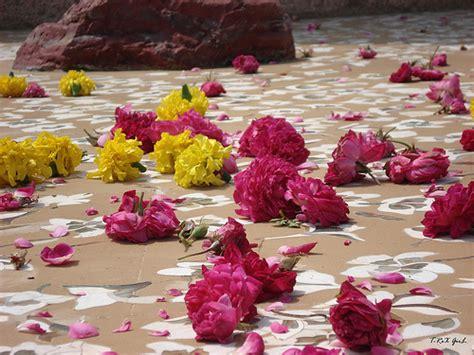 gambar bunga cinta islami gambar bunga
