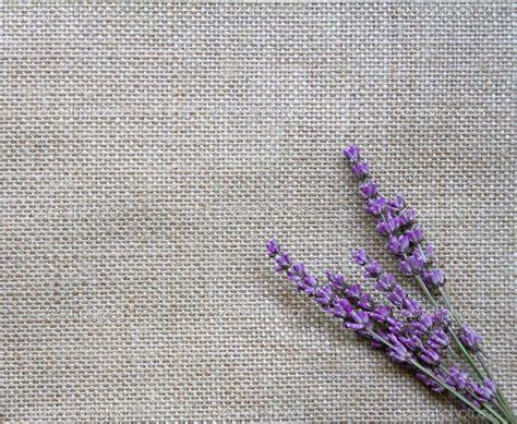 tapete lavendel lavender backgrounds wallpaper cave