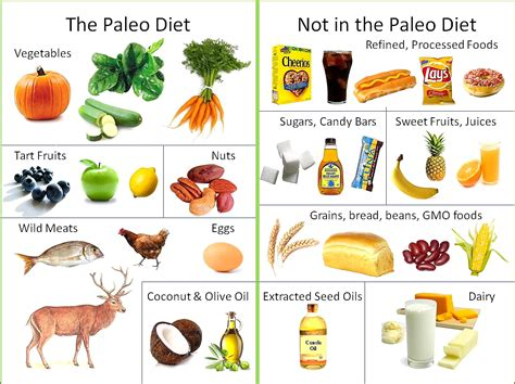 food diet what s the paleo diet s healthy kitchen