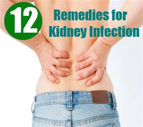 17 best images about kidney health on urinary