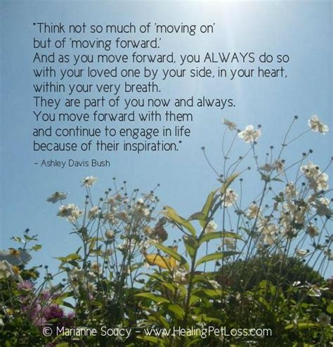 Comforting Words For Of A Pet by Inspiration Pet Heaven Earth Grief Tears
