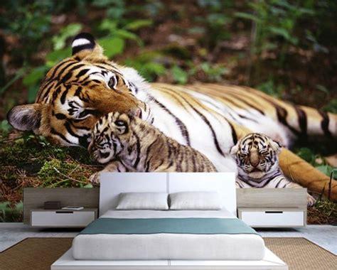 tiger wall murals tiger wall murals katzenworld