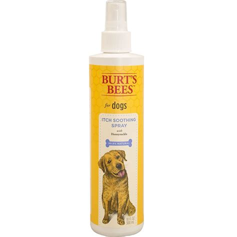 burt s bees for dogs burt s bees itch soothing spray for dogs 10 fl oz