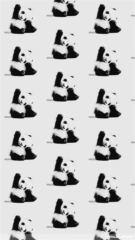wallpaper black and white panda cute panda bears iphone wallpaper black white wallpapers