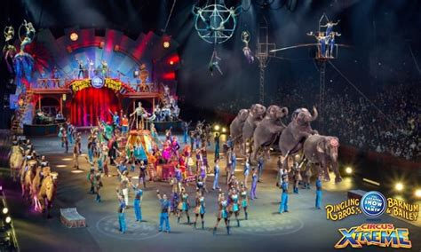 Home Design Store Coral Gables by Ringling Bros And Barnum Amp Bailey Circus Discount Miami