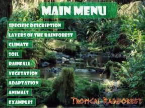 Plant Species In Tropical Rainforest - tropical rainforest biome