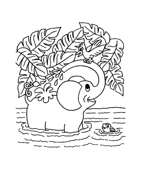 jungle animal coloring pages free printable jungle coloring pages coloring kids