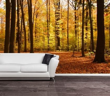 affordable wall murals self adhesive autumn forest decorating mural 157 free delivery option to uk eu