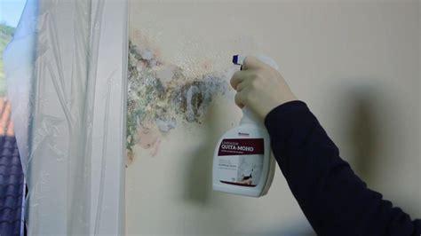 productos para la humedad en paredes interiores 15 tips para quitar manchas de humedad en paredes