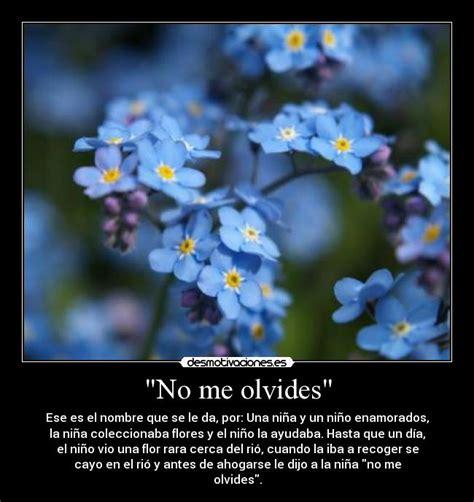 Imagenes Flores No Me Olvides | quot no me olvides quot desmotivaciones