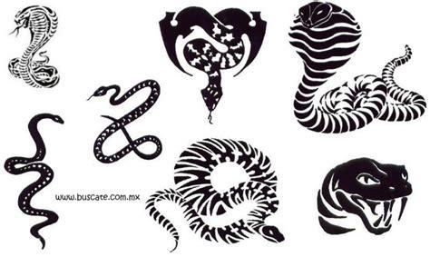 imagenes de tatuajes de viboras imagenes y videos de tatuajes de serpientes