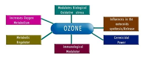 Ozone Therapy Lead Detox by Ozone Therapy India What Is Ozone Therapy
