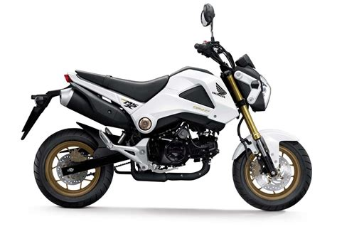 2014 Honda MSX125/Grom Colors Revealed   Motorcycle.com News