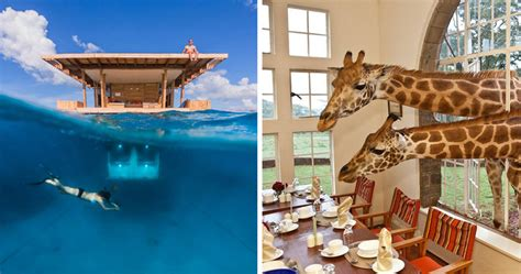 10 Unique Themed Hotels From Around The World by 25 Of The Coolest Hotels In The World Bored Panda