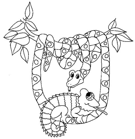 pokemon coloring chameleon coloring pages