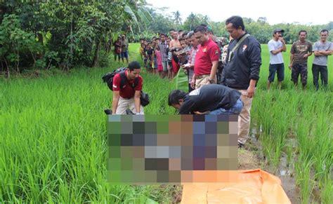 Kaos Wolfskin Dongker penemuan mayat laki laki di sawah gegerkan warga