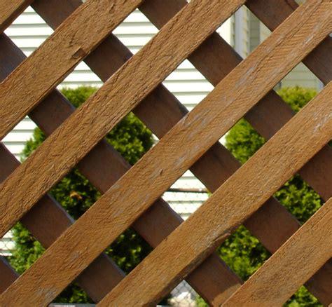 plural of trellis lattice wiktionary
