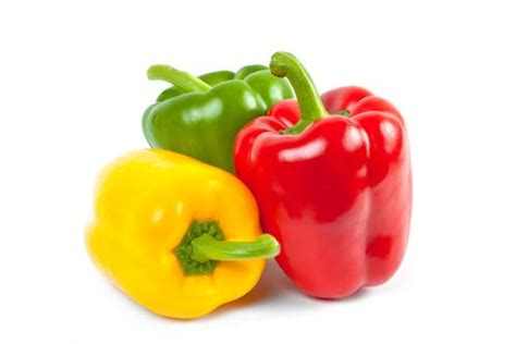 can dogs eat green peppers bell peppers for dogs 101 can dogs eat bell peppers