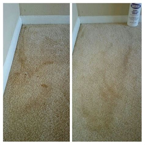 Carpet Smells After Using Rug Doctor by The World S Catalog Of Ideas