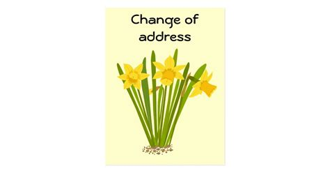 daffodils change of address postcard template zazzle