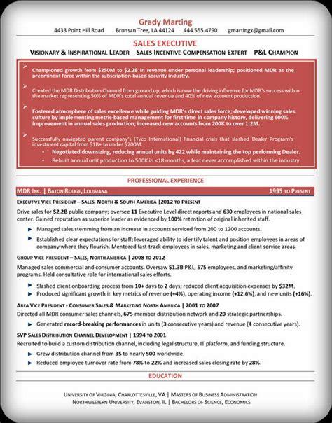 svp templates svp evp sales executive resume exle openoffice format