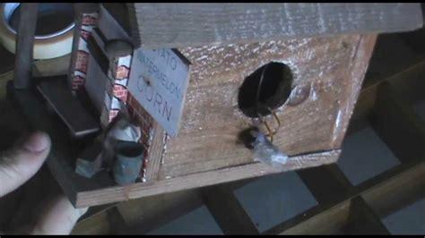 telecamera nascosta doccia guida costruire e nascondere una microcamera