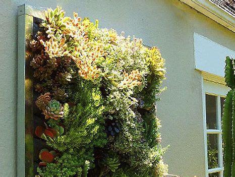 simple ways  create  diy living wall treehugger