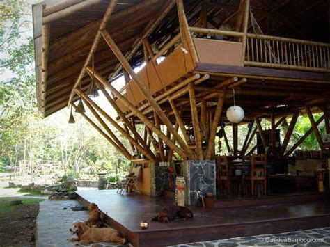 Small Bungalow Style House Plans by The Reality About Building With Bamboo Guadua Bamboo