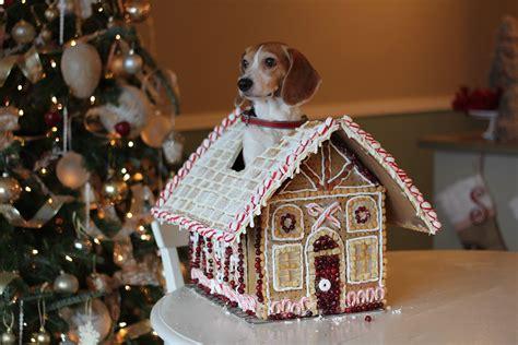 the best dog house ever best food ever hot girls wallpaper