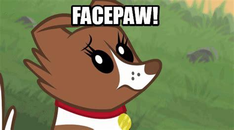 Magic Meme Gif - magic meme gif facepaw my little pony friendship is